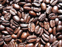 Coffee Bean Close Up. Macro of coffee beans in the sun light Royalty Free Stock Image
