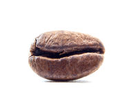 Coffee bean close up macro isolated on a white Royalty Free Stock Photography