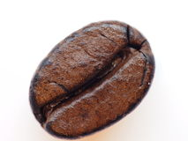 Coffee Bean. Closeup of one roasted coffee bean Royalty Free Stock Photo