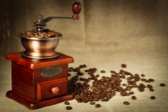 Coffee bean and coffee bean grinder Stock Image