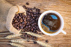 Coffee bean,coffee cup Royalty Free Stock Photography
