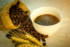 Coffee bean,coffee cup Stock Photography