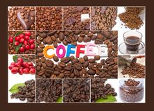 Coffee Bean Collage. Collage from coffee beans and Single word royalty free stock photography