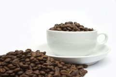 Coffee bean cup 2 Stock Photos