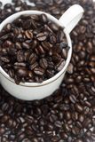 Coffee bean cup Royalty Free Stock Images