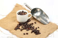 Coffee bean cup scoop Stock Photos