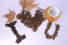 Coffee bean, cups, leaf on white background stock photography