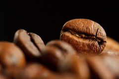 Coffee bean detail. In studio, with black background Stock Images