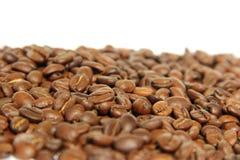 Coffee bean. Fresh roasted Arabica coffee beans Stock Photos