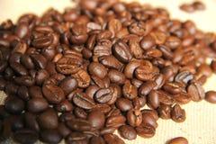 Coffee bean. Fresh roasted Arabica coffee beans Stock Photo