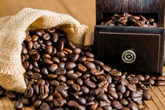 Coffee bean and grinder Royalty Free Stock Photo