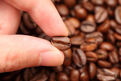 Coffee bean in hand Royalty Free Stock Photos