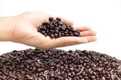 Coffee bean on hand in isolated background idea  concept Royalty Free Stock Images