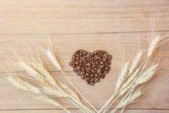 Coffee bean heart shape Royalty Free Stock Photography