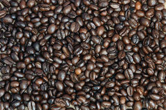 Coffee Bean. High resolution coffee bean background Royalty Free Stock Photos