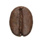 Coffee bean isolated. Isolated macro photo of a coffee bean Royalty Free Stock Photography