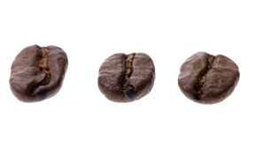 Coffee bean isolated Stock Image