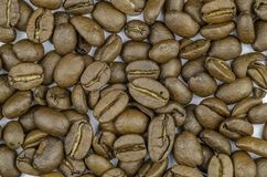 Coffee bean isolated full area of white space royalty free stock image