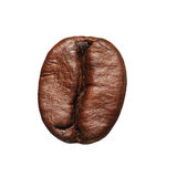 Coffee Bean isolated Royalty Free Stock Photos