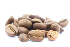 Coffee bean isolated on white background Royalty Free Stock Images