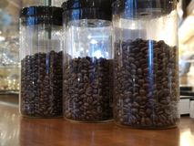 Coffee bean in the jar stock photography