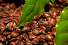 Coffee bean and leaves Royalty Free Stock Images