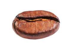 Coffee bean macro Isolated on white background. High Resolution Royalty Free Stock Photography