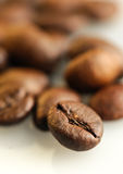 Coffee bean macro shot Royalty Free Stock Image