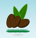 Coffee bean natural. Grass concept royalty free illustration