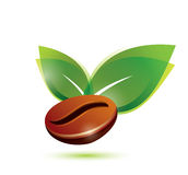Coffee bean natural, icon. Coffee bean natural, stylized icon Stock Photo