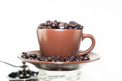 Coffee bean overflow in coffee cup Stock Image