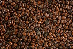 Coffee bean pattern texture Royalty Free Stock Photography