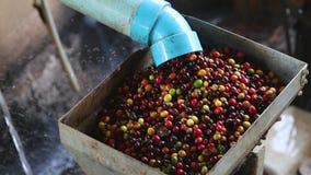 Coffee bean peeling machine with water