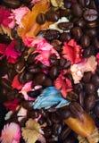 Coffee bean. And Potpourri Stock Image
