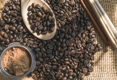 Coffee bean and powder on sackcloth.  royalty free stock photography