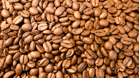 Coffee bean after roast. Coffee bean after twice roast royalty free stock photos