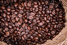 Coffee bean. Roasted and aromatic coffee beans stock photography