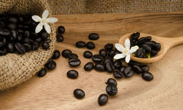 Coffee bean in sack Stock Photography