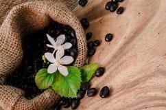 Coffee bean in sack Stock Image