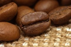 Coffee bean on sacking Royalty Free Stock Photo