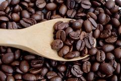 Coffee Bean scoop by wooden spoon Stock Images