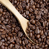 Coffee Bean scoop by wooden spoon Stock Image