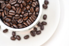 Coffee Bean Series 1 Royalty Free Stock Photo