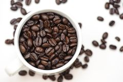 Coffee Bean Series 2 Stock Images