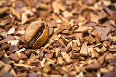 Coffee bean and soluble coffee Stock Images
