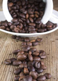 Coffee bean spilled on old plank. Roasted coffee bean spilled on old plank Stock Images