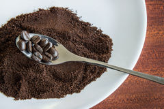 Coffee bean on spoon and coffee powder Stock Images