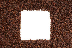 Coffee bean square Royalty Free Stock Photo