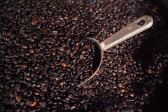 Coffee bean with stainless big bowl spoon. Royalty Free Stock Photography