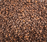 Coffee bean surface as a background Stock Photography